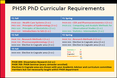PHSR Curricular Requirements