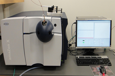 Bruker AmaZon X Ion Trap Mass Spectrometer